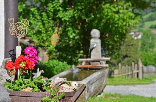 Rasteinerhof in St. Sigmund / Kiens 11